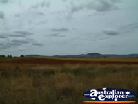 Scenery Between Clifton & Toowoomba . . . CLICK TO ENLARGE