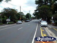 Gallery Walk in Tamborine . . . CLICK TO ENLARGE