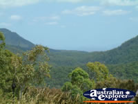 Views of the Gold Coast from Tamborine Mountain