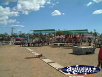 Chinchilla Crowds Arriving at Showgrounds . . . CLICK TO ENLARGE