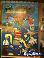 Mareeba Coffee Works Painting . . . CLICK TO ENLARGE