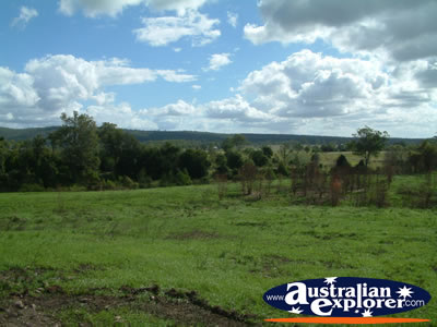 Gympie Gate's Green Grass and Blue Skies . . . CLICK TO VIEW ALL GYMPIE POSTCARDS