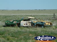 Winton a Dead Ute on Way to Winton . . . CLICK TO ENLARGE