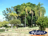 Sunny shot of the Dalby Jimbour House Grounds . . . CLICK TO ENLARGE