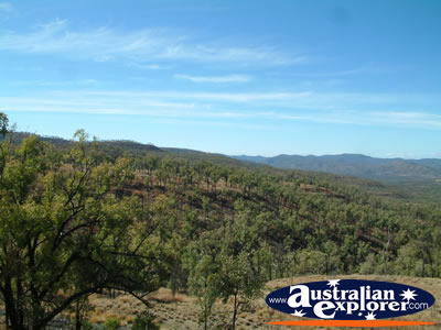 Alpha Drummond Range Mountains Scenery . . . CLICK TO VIEW ALL ALPHA POSTCARDS