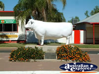 Aramac Statue of Henry Bradfords Stolen Bull . . . CLICK TO ENLARGE