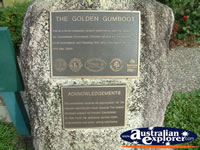 Tully Golden Gumboot Plaque . . . CLICK TO ENLARGE