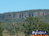 Carnarvon Gorge From Distance . . . CLICK TO ENLARGE