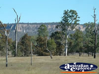 Outside Of Carnarvon Gorge . . . CLICK TO ENLARGE