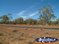 Landscape of Road Between St George & Cunnamulla . . . CLICK TO ENLARGE