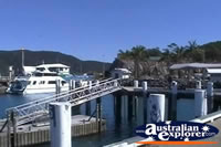 Airlie Beach Shute Harbour Jetty . . . CLICK TO ENLARGE