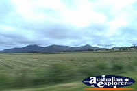 Atherton Tablelands . . . CLICK TO ENLARGE