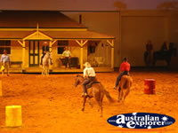 Australian Outback Spectacular Horses . . . CLICK TO ENLARGE
