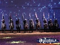 Australian Outback Spectacular Horses Lined up . . . CLICK TO ENLARGE