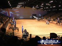 Australian Outback Spectacular Horses Parading . . . CLICK TO ENLARGE