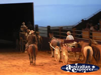 Australian Outback Spectacular Horses Exiting . . . CLICK TO ENLARGE