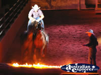 Australian Outback Spectacular Horses Jumping . . . CLICK TO ENLARGE