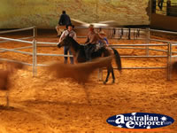 Australian Outback Spectacular Horses Running . . . CLICK TO ENLARGE