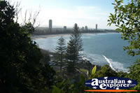 Burleigh Heads Beach on the Gold Coast . . . CLICK TO ENLARGE