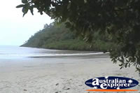 Cape Tribulation Beach . . . CLICK TO ENLARGE