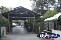 Carrara Market on the Gold Coast . . . CLICK TO ENLARGE