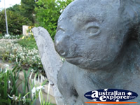 Koala Statue . . . CLICK TO ENLARGE
