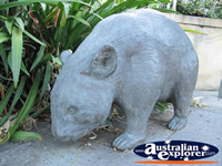 Wombat Statue . . . CLICK TO ENLARGE