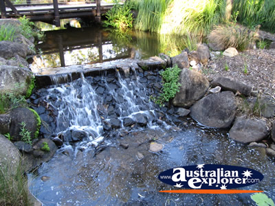 Water Fall at the Gold Coast Botanic Gardens