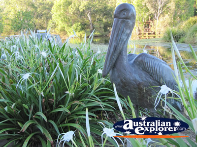 Statue of a Pelican at Gold Coast Botanic Gardens