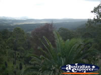 Gold Coast Hinterland View . . . CLICK TO ENLARGE
