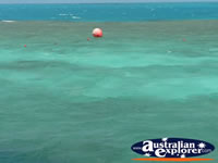 Great Barrier Reef Ocean . . . CLICK TO ENLARGE
