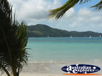 Beautiful Hamilton Island Beach . . . CLICK TO ENLARGE
