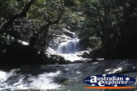 View of Josephine Falls . . . CLICK TO ENLARGE