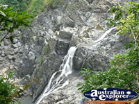 View of Kuranda Waterfall . . . CLICK TO ENLARGE