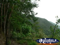 Scenic View of Kuranda . . . CLICK TO ENLARGE