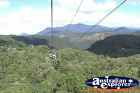 Kuranda Skyrail View . . . CLICK TO ENLARGE