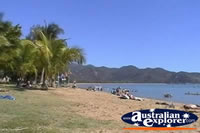Magnetic Island Horseshoe Bay Beach . . . CLICK TO ENLARGE