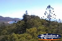 Magnetic Island Views of Trees from Tower . . . CLICK TO ENLARGE