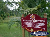 Mapleton Lilyponds Entrance . . . CLICK TO ENLARGE