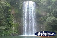 Millaa Millaa Falls . . . CLICK TO ENLARGE