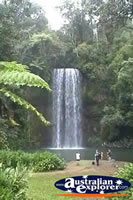 Millaa Millaa Falls from a Distance . . . CLICK TO ENLARGE