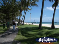 Moreton Island Resort and Beach . . . CLICK TO ENLARGE