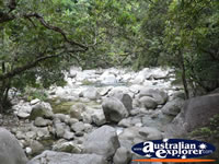 Mossman Gorge Rocks . . . CLICK TO ENLARGE