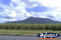 View of Mt Bartle Frere . . . CLICK TO ENLARGE