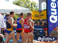 Noosa Triathalon Athletes . . . CLICK TO ENLARGE