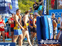 Athletes in Noosa Triathalon . . . CLICK TO ENLARGE