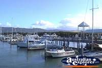 Harbour in Port Douglas . . . CLICK TO ENLARGE