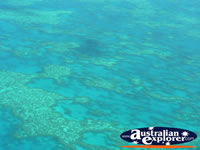 Blue Waters in Heart Reef . . . CLICK TO ENLARGE