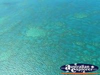 Sparkling Ocean in Heart Reef . . . CLICK TO ENLARGE