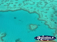 Heart Reef Birdseye View . . . CLICK TO ENLARGE